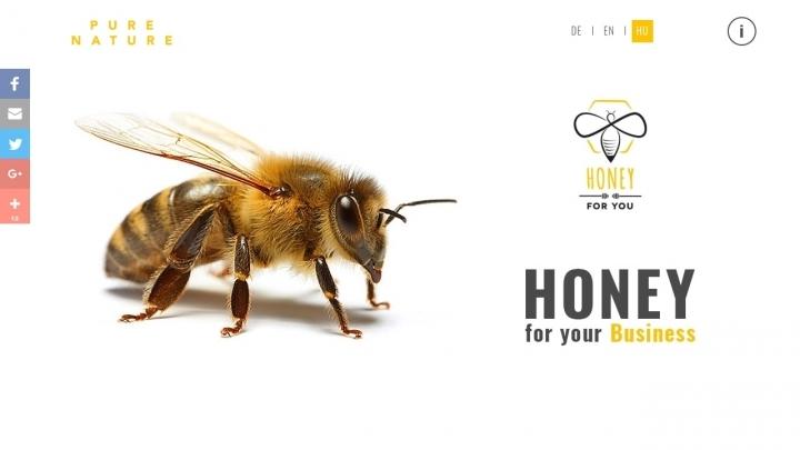 Honey for You